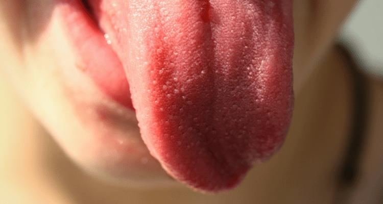 La lengua, esa gran olvidada